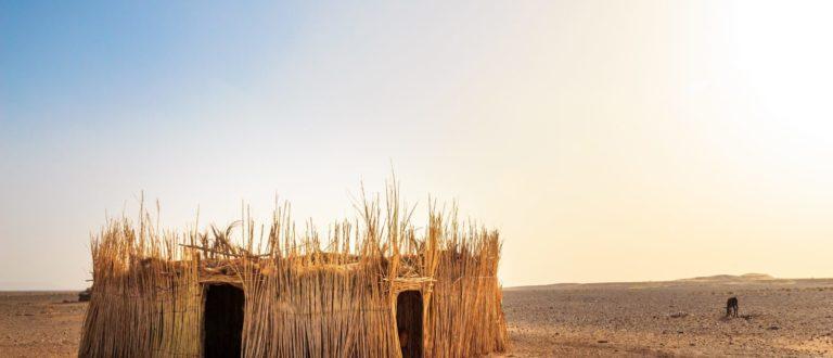 Article : Iwaria, un autre regard sur l'Afrique en photo
